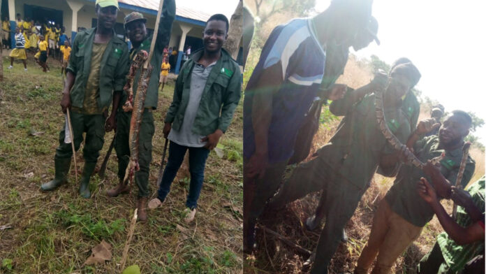 Youth In Afforestation